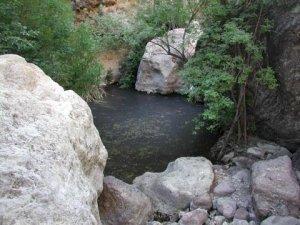Upper fish creek