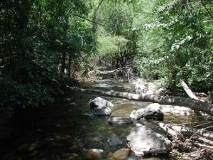 West Clear creek