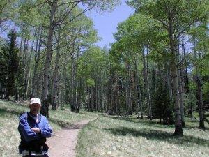 Hiker on the Kachina trail