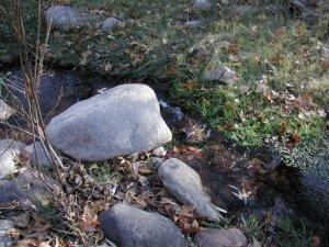 Campaign creek