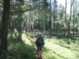 Hikers on the Los Burros trail