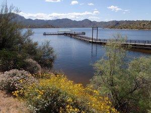 Bartlett lake: Palo Verde trail